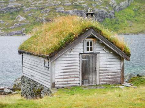 Closeup of one of the buildings with a living roof found throughout this part of Norway