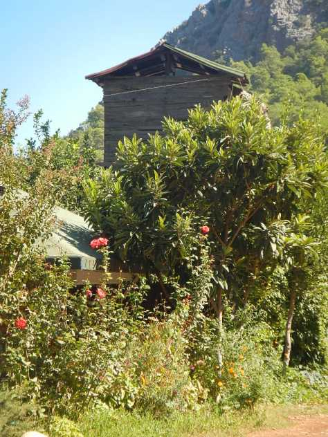 Olympos treehouse